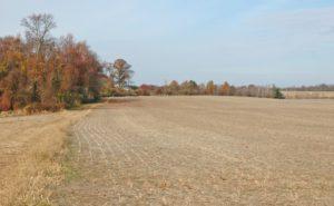 SOLD Earleville 9.08 acre lot/ Deer Crossing