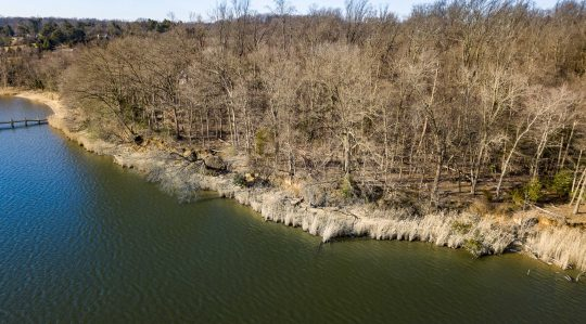 http://lcparkerrealestate.com/wp-content/uploads/2019/01/Hall-Creek-Lot-08-540x299.jpg