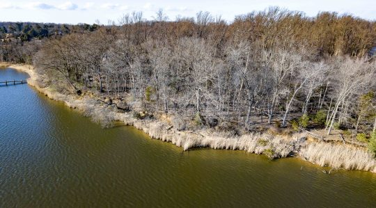 http://lcparkerrealestate.com/wp-content/uploads/2019/01/Hall-Creek-Lot-09-540x299.jpg