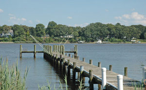 Chester River Waterfront
